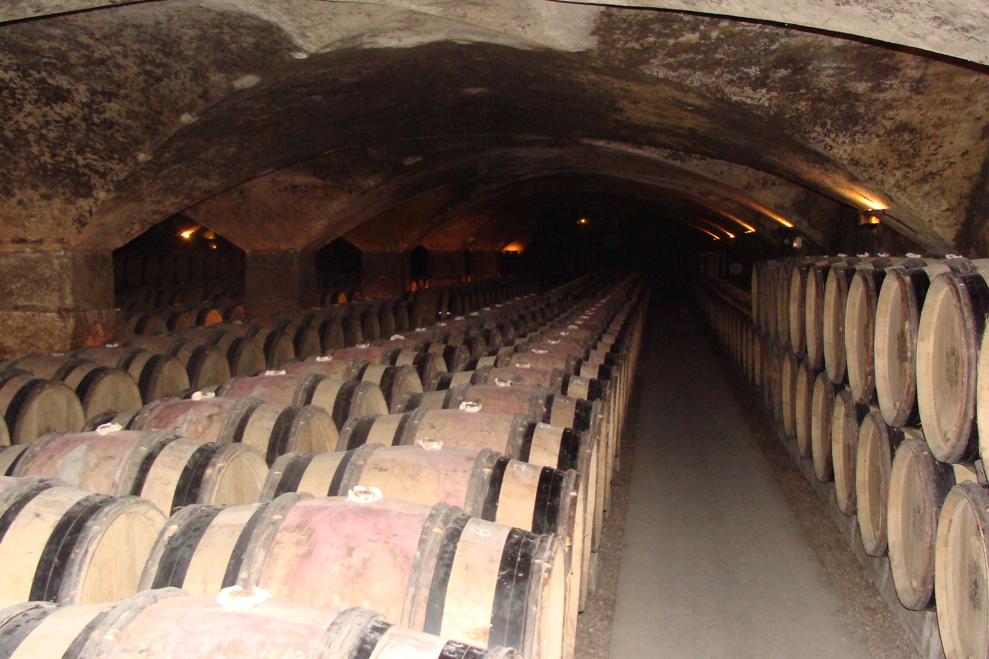 vast cellars of Chateau Meursault