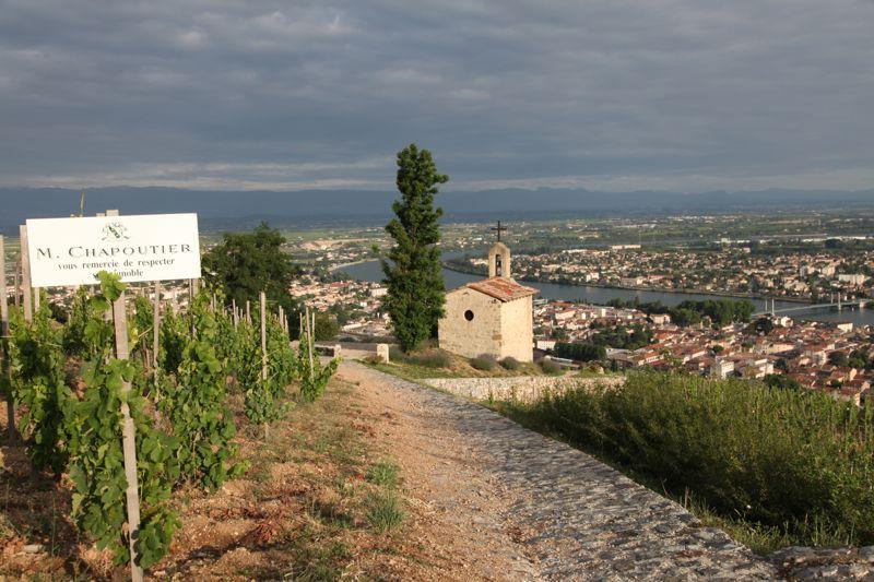 Rhône iconic vineyards