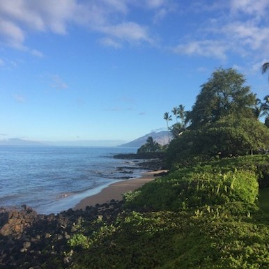Maui: beauty of volcanic force and boundless biodiversity in the midst of Pacific