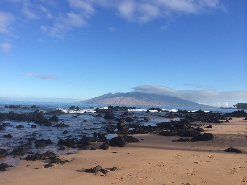 Maui's black volcanic rocks