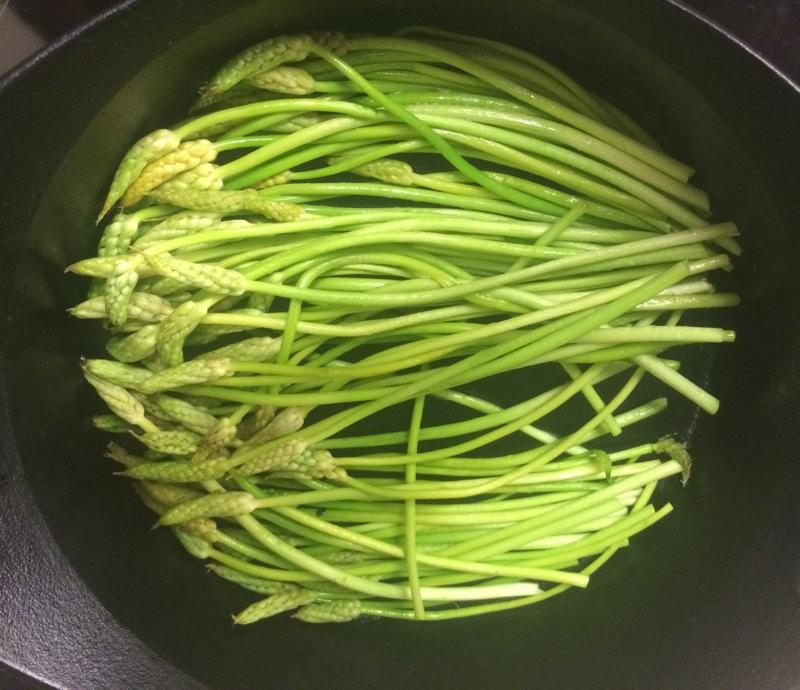 Spring wild asparagus
