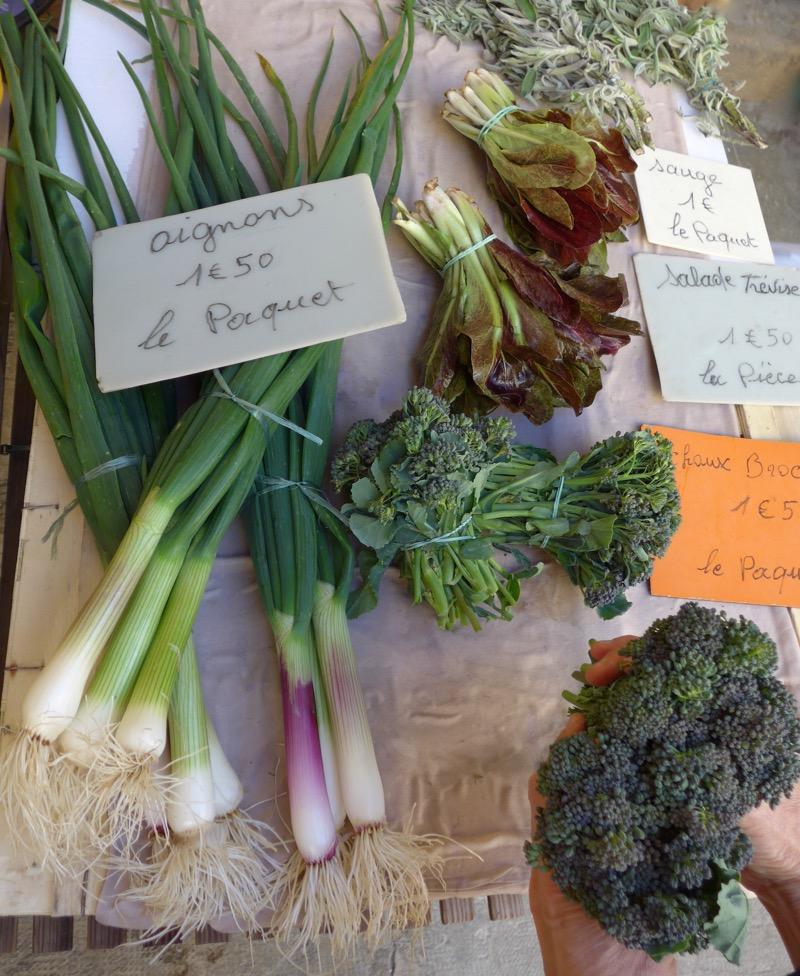 Spring onion, broccoli and salad