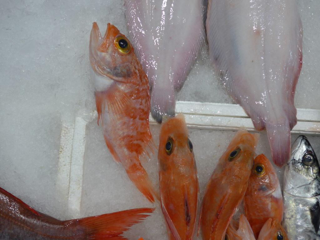 line caught fish