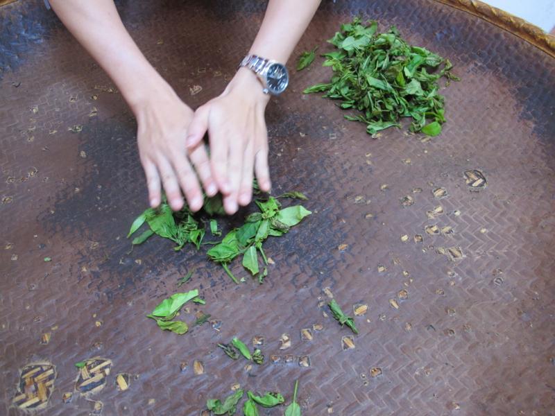 rolling tea in Taiwan