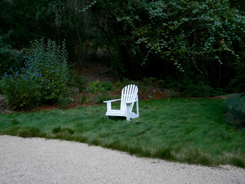 chair on the lawn