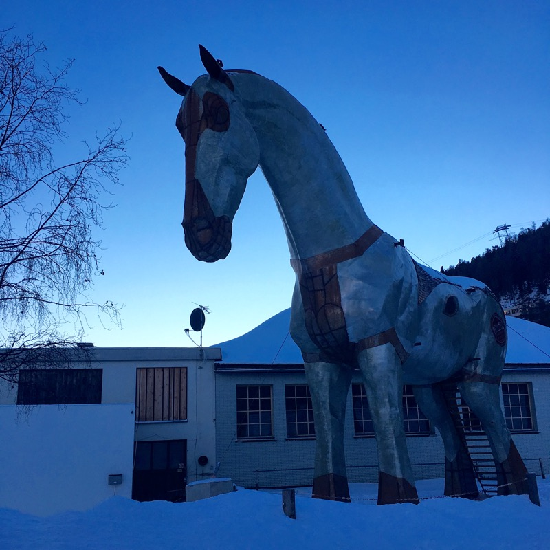 winter horse race
