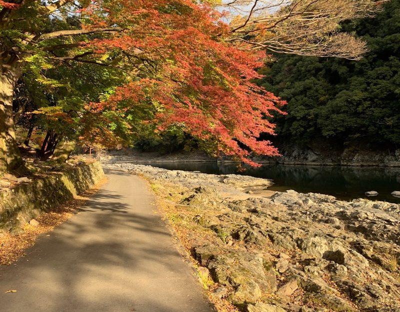 Kyoto poetry