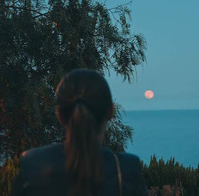Full Moon Alive