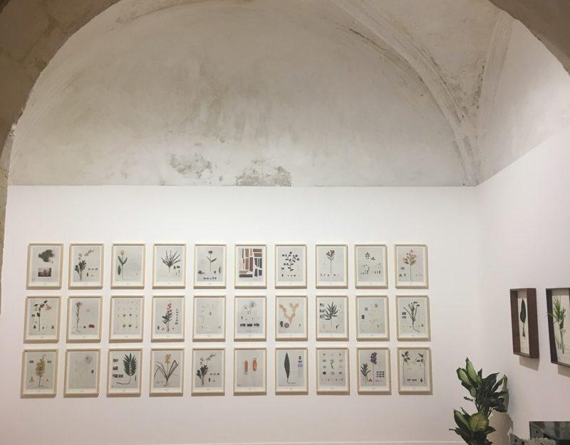 art in Arles